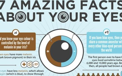 7 Amazing Facts About Your Eyes Infographic2 Fb
