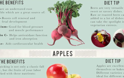 A Guide To Fall Food Infographic F