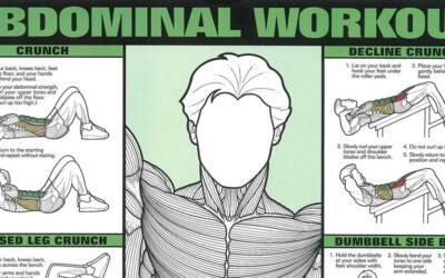 Abdominal Workout Chart F