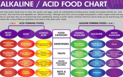 Alkaline Acid Food Chart F