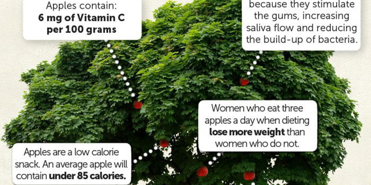 An Apple A Day Infographic F