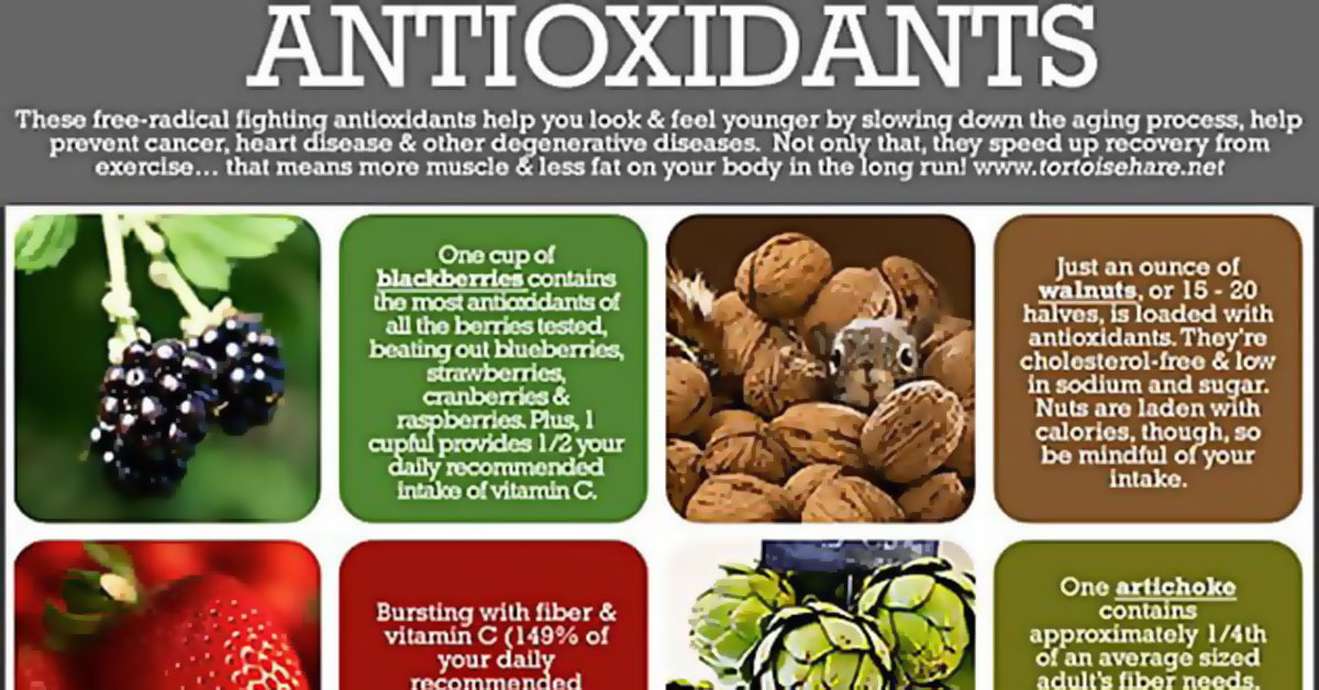 Antioxidants Infographic Apple