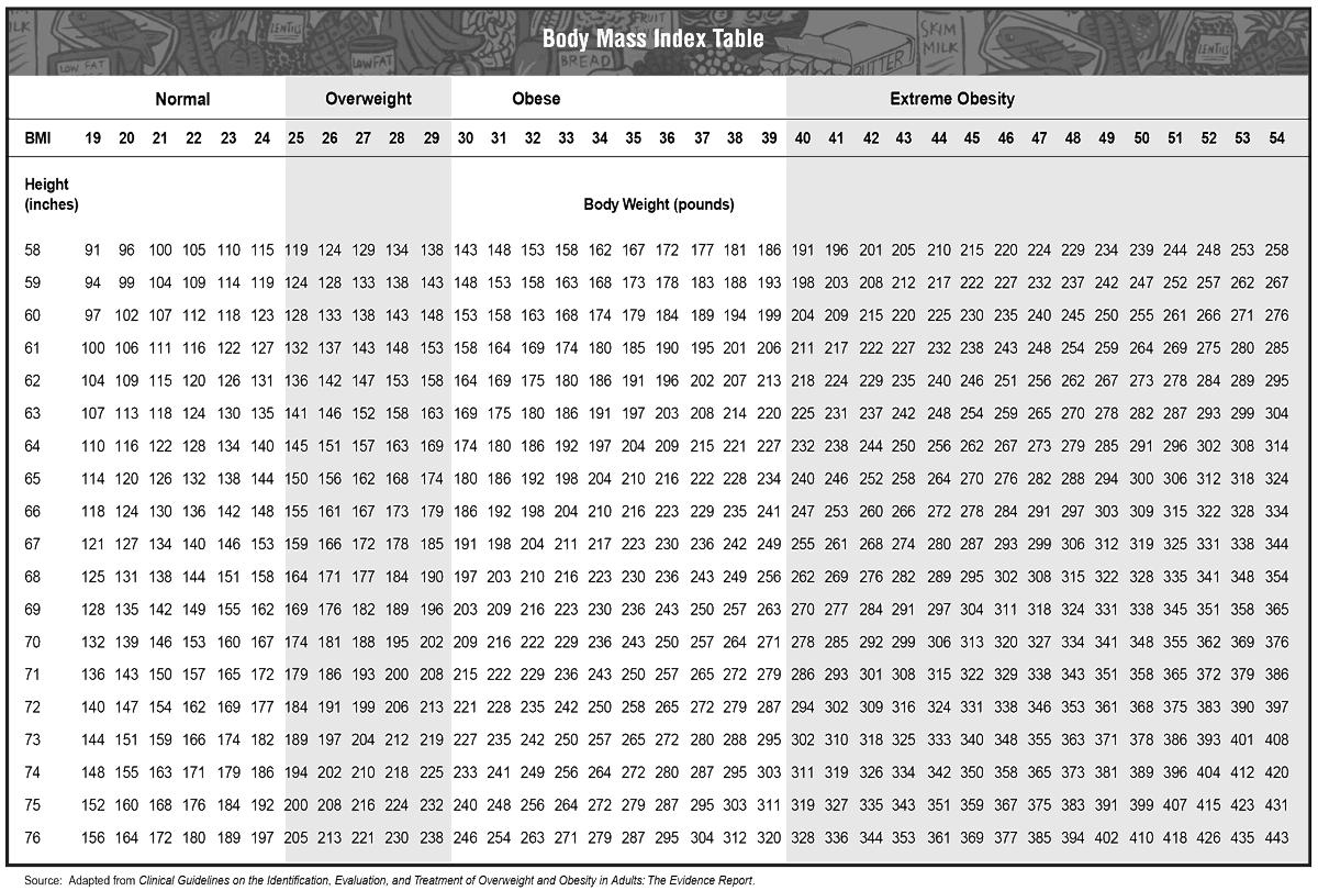 BMI Chart Calculator