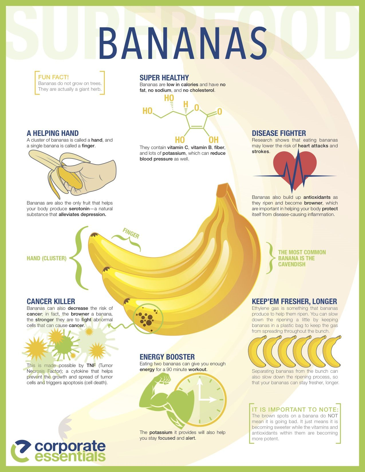 10 Proven Health Benefits Of Bananas Page 8