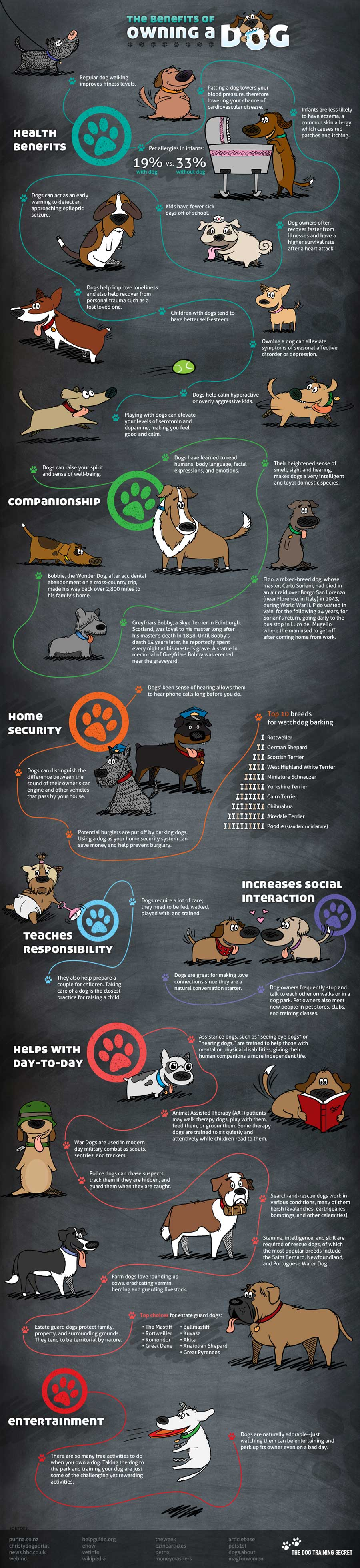 Benefits of Owning a Dog Infographic