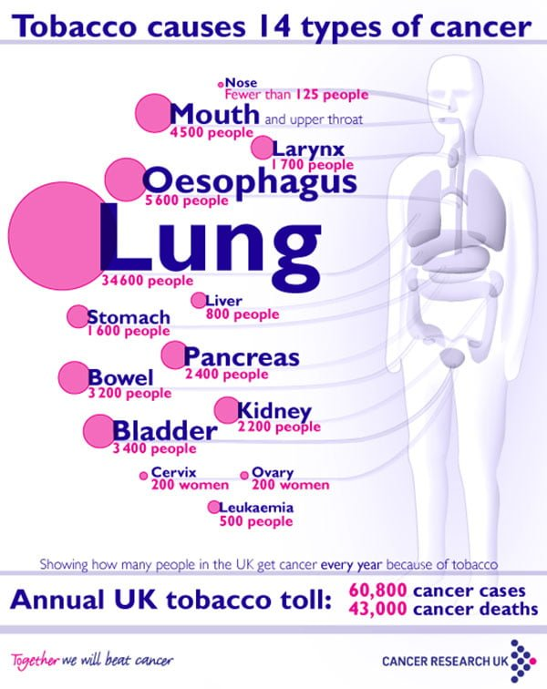 Cancers Caused By Smoking Infographic