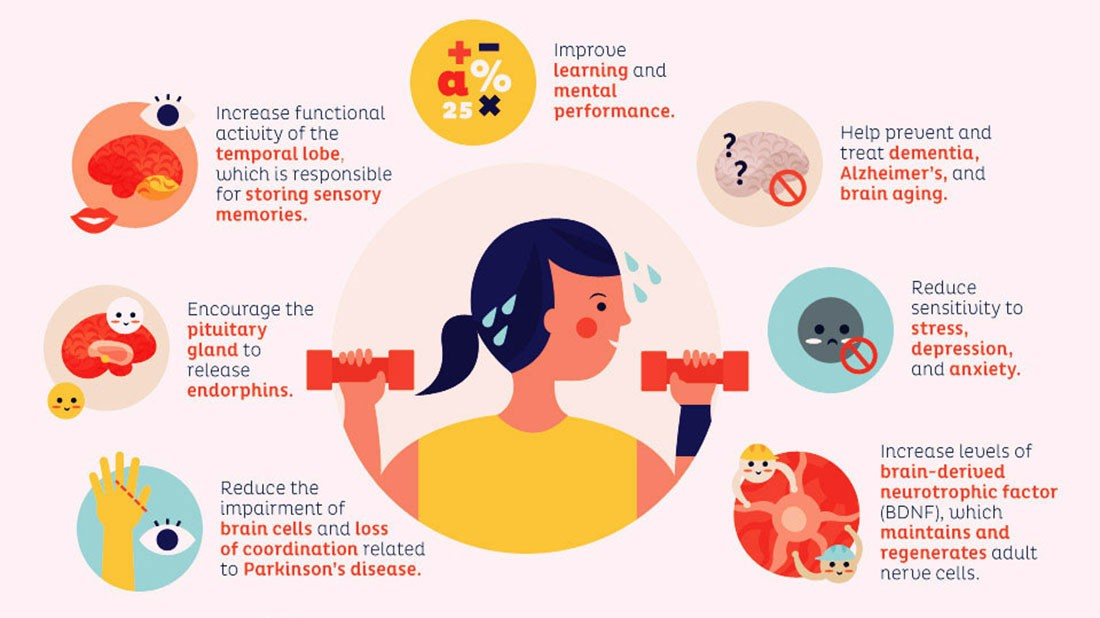 Exercise helps to prevent cognitive decline