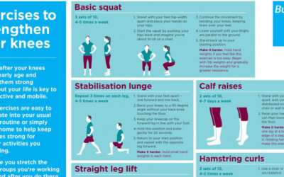Exercises To Strengthen Your Knees F