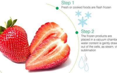 Freeze Dried Strawberries Fb