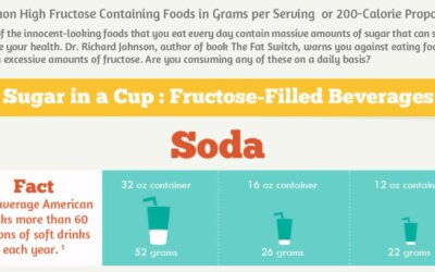 Fructose Overload Infographic F