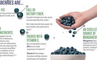 Health Benefits Of Blueberries Infographic F