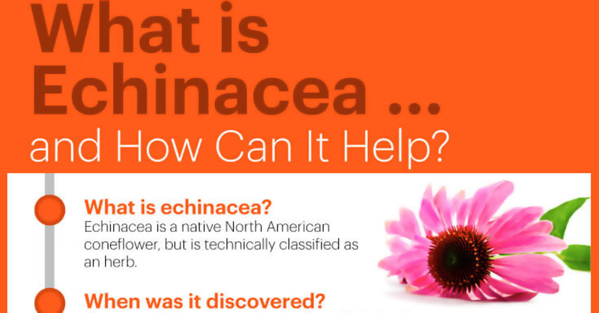 Health Benefits Of Echinacea F