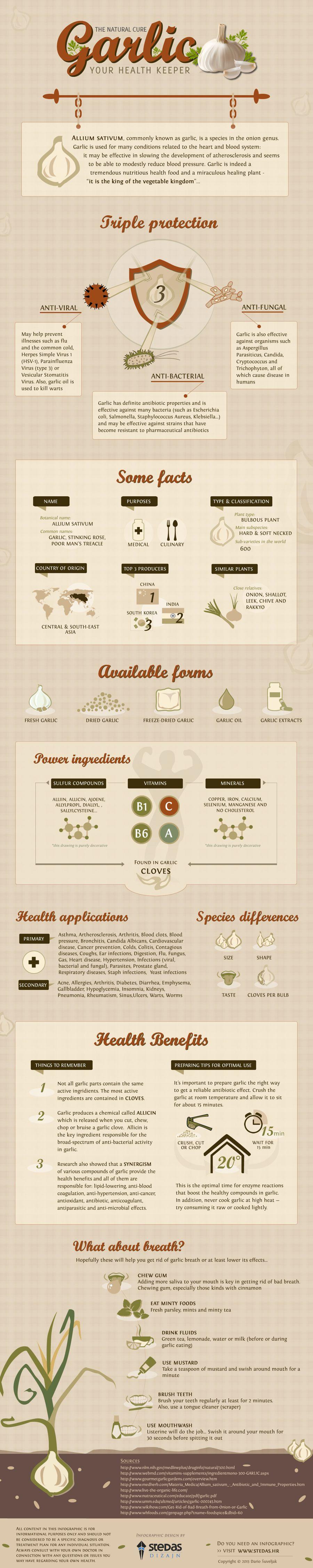 Health Benefits Of Garlic 8