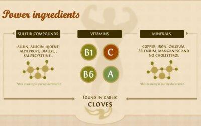 Health Benefits Of Garlic Infographic F