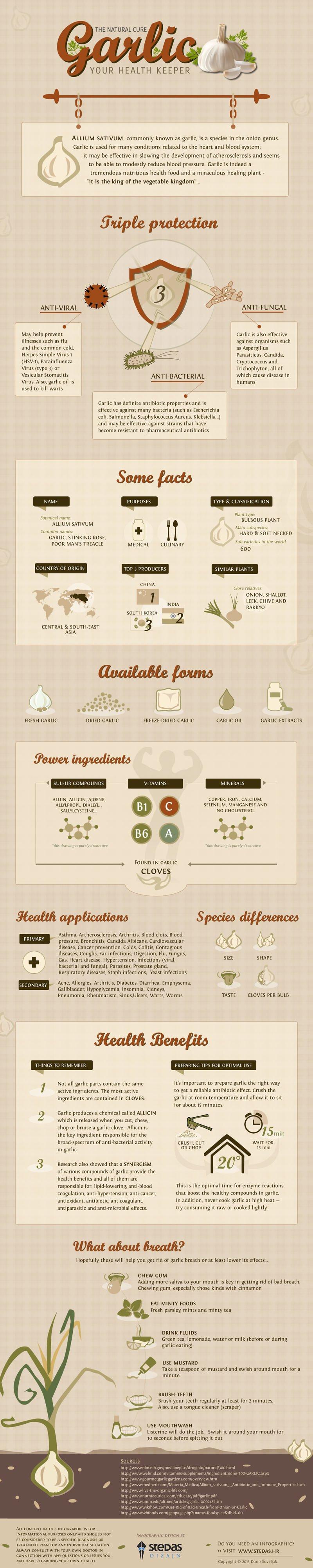 Health Benefits of Garlic Infographic