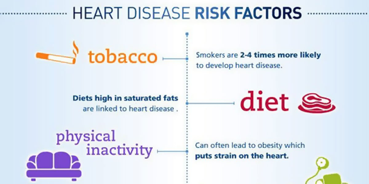 Heart Disease Risk Factors And Prevention Infographic F