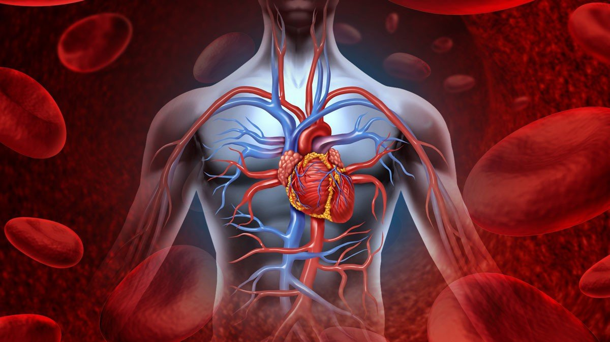 Women's Heart Health - cover