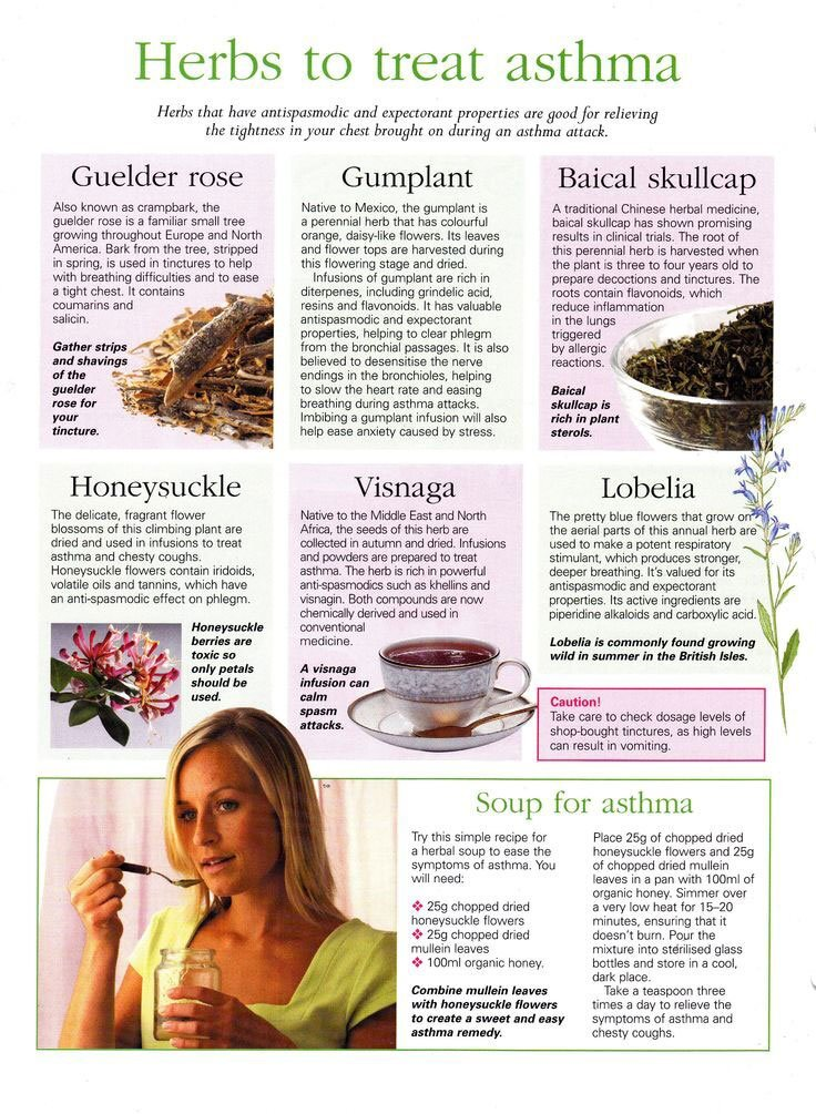 Herbs To Treat Asthma Infographic
