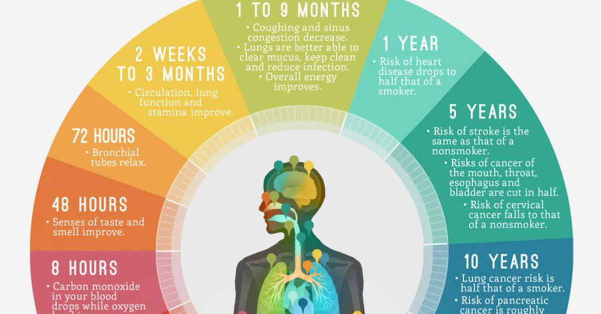 How Quitting Smoking Changes Your Body Infographic F
