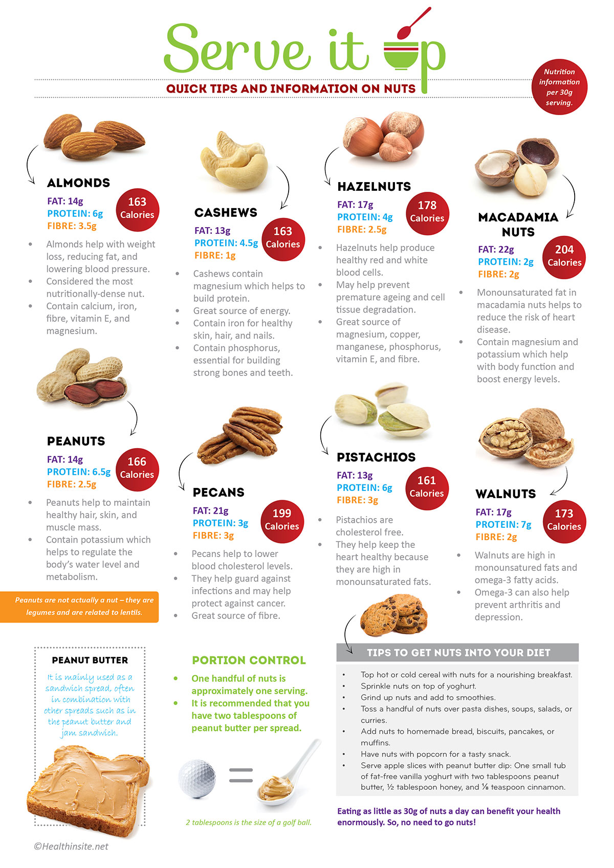 Information On Nuts Infographic