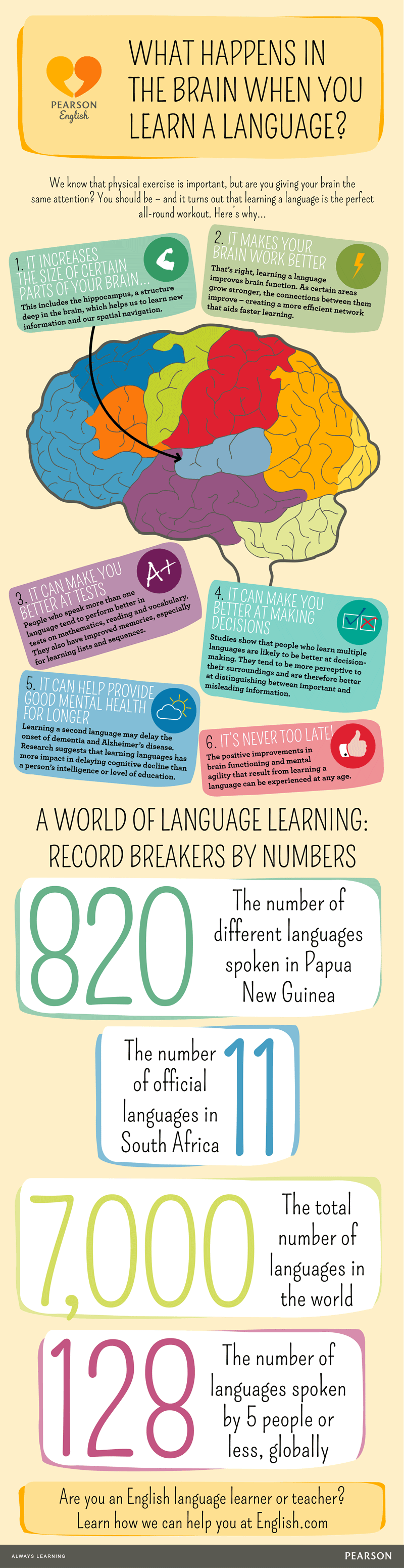 Learning A Second Language Helps To Prevent Dementia