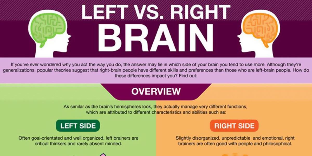 Left Vs Right Brain Infographic F