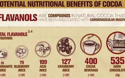 Natural Cocoa And Dark Chocolate Infographic F
