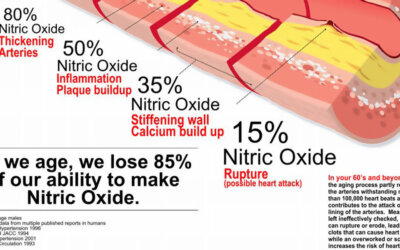 Nitric Oxide Infographic F