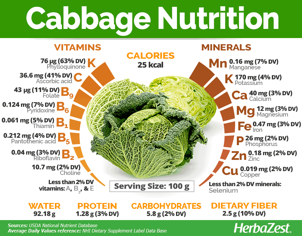 Nutrients In Cabbage
