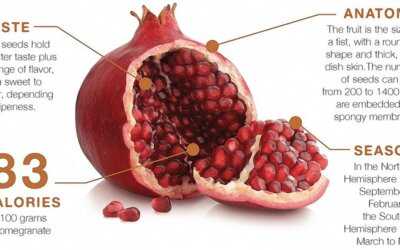 Drink Pomegranate Juice Every Day to Help Improve Blood Pressure