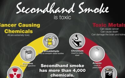 Secondhand Smoke Is Toxic Infographic Cr
