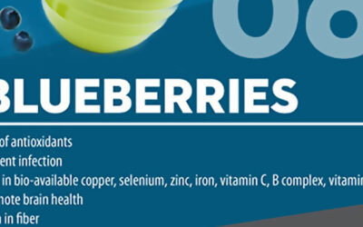 Seven Superfoods Infographic F