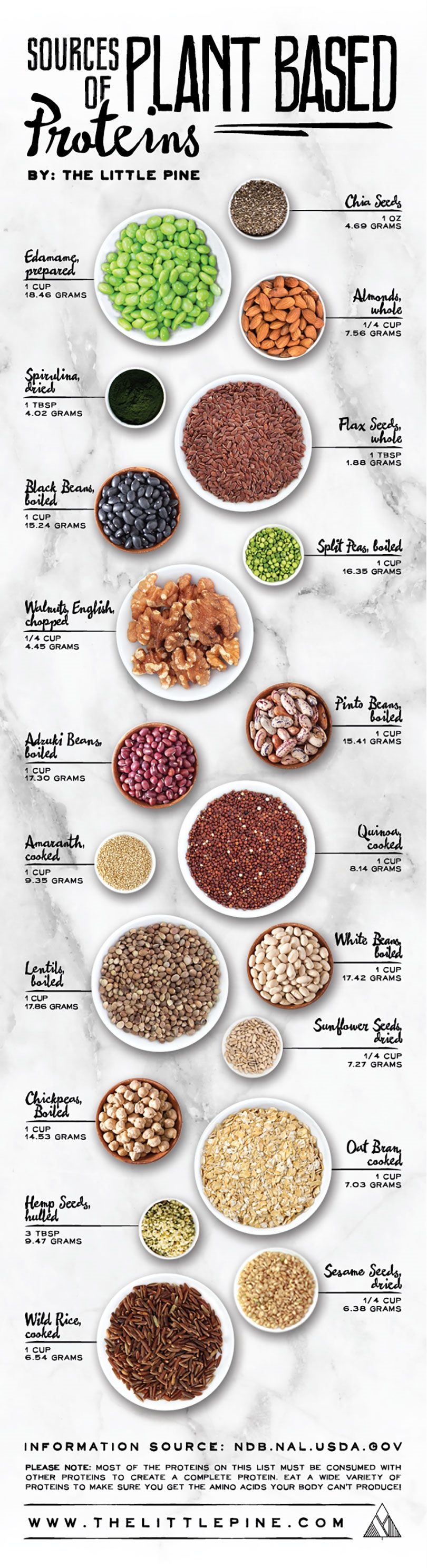 Sources Of Plant Protein
