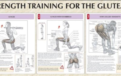 Strength Training For The Glutes Chart F