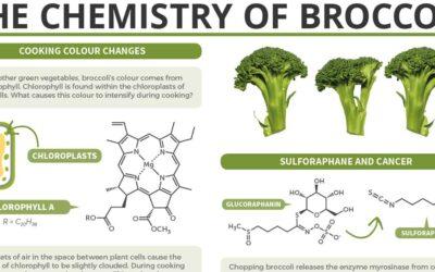 The Chemistry Of Broccoli F