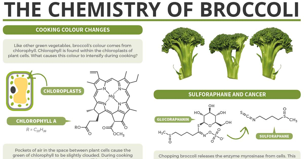 The Chemistry Of Broccoli F