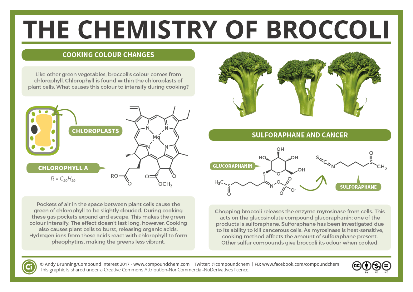 The Chemistry Of Broccoli