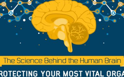 The Science Behind the Human Brain