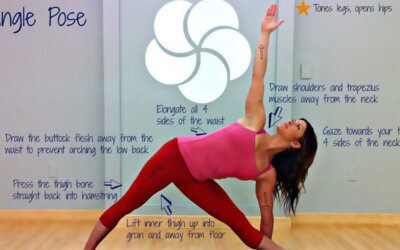 Triangle Yoga Pose F