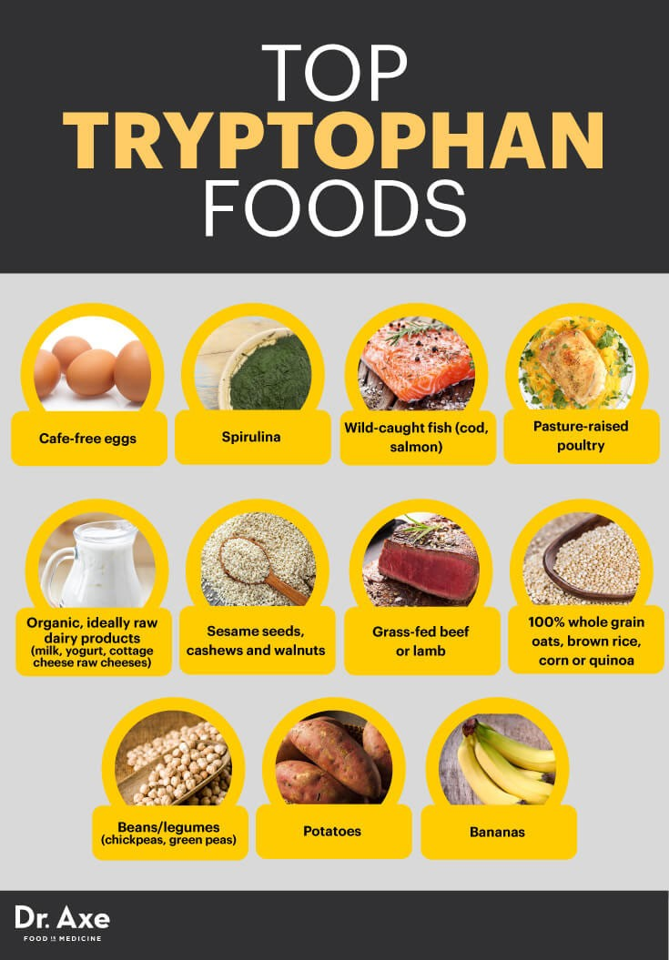 Tryptophan Infographic