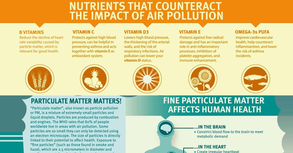 Vitamin B Supplements Reduce Harm Of Air Pollution