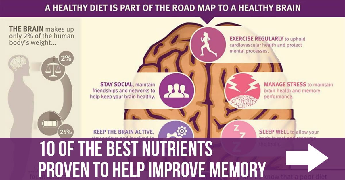 10 of the Best Nutrients Proven to Help Improve Memory