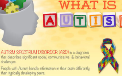 What Is Autism Infographic1 F