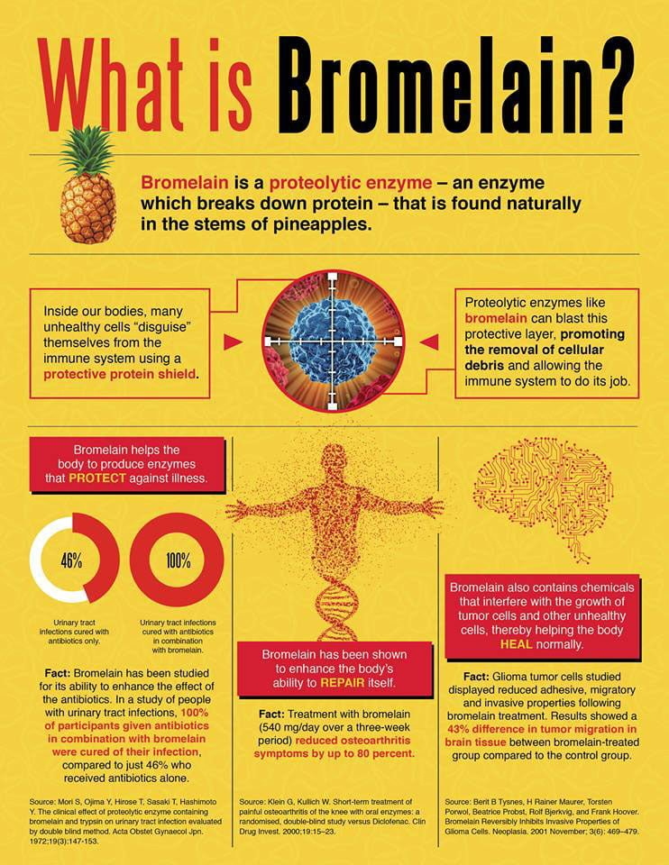 what-is-bromelain-infographic