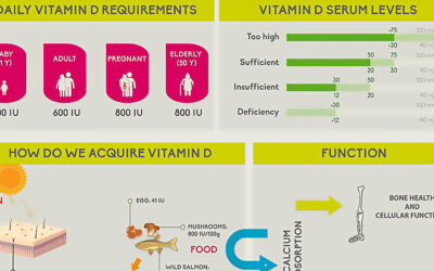 What You Need To Know About Vitamin D Infographic F