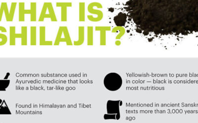 What Is Shilajit Infographic F