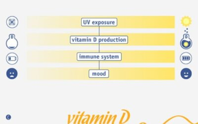 Why We Need Vitamin D Infographic