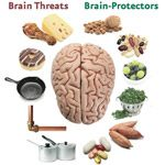 diet-and-brain-health