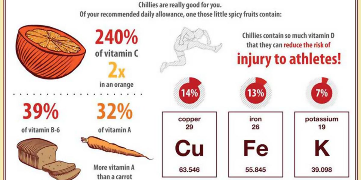 Chilli Infographic F
