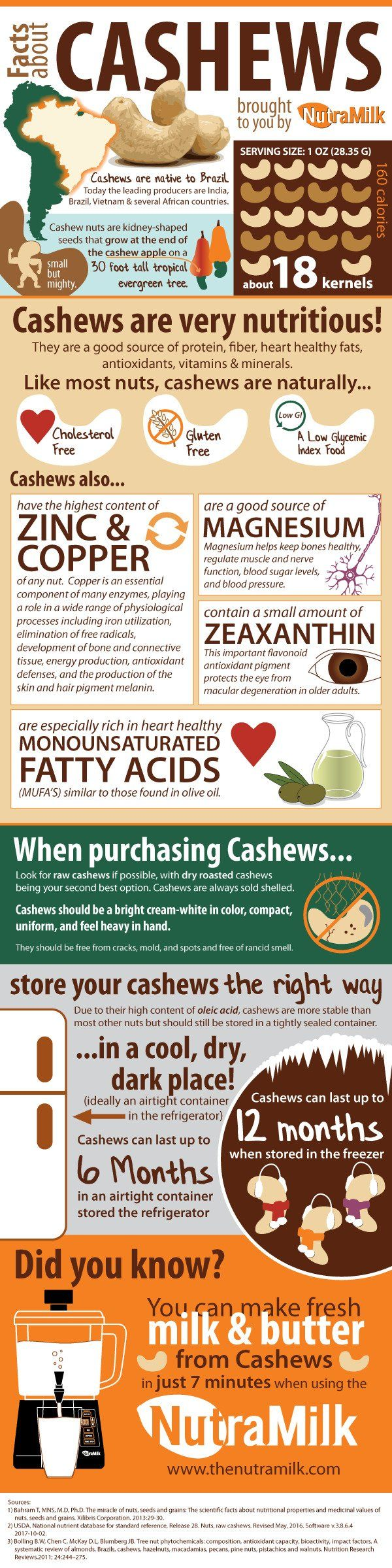 Facts About Cashews